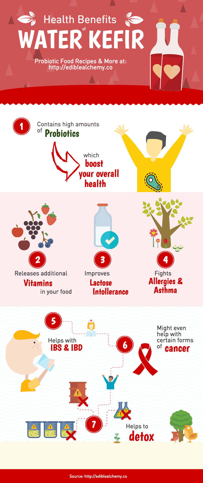 Water Kefir Health Benefits Infographic