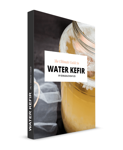 Water Kefir Guide Cover